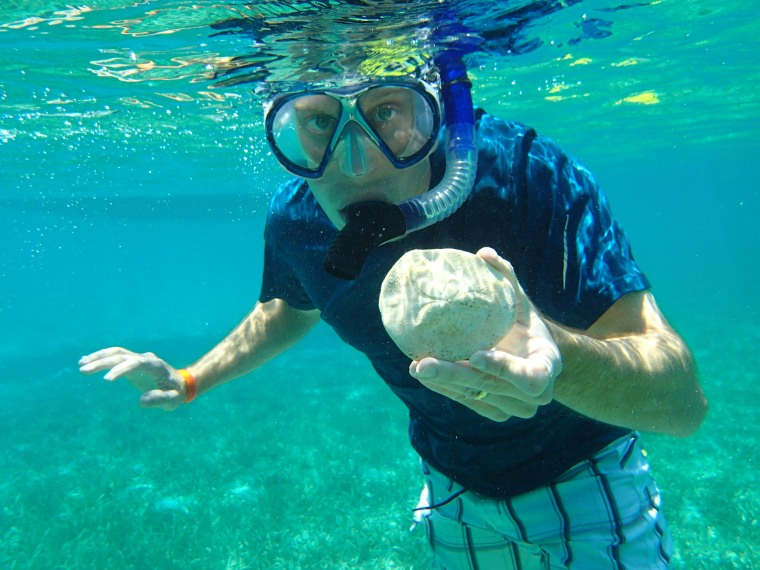 Clay is always finding treasures under the sea, like this big sand dollar.